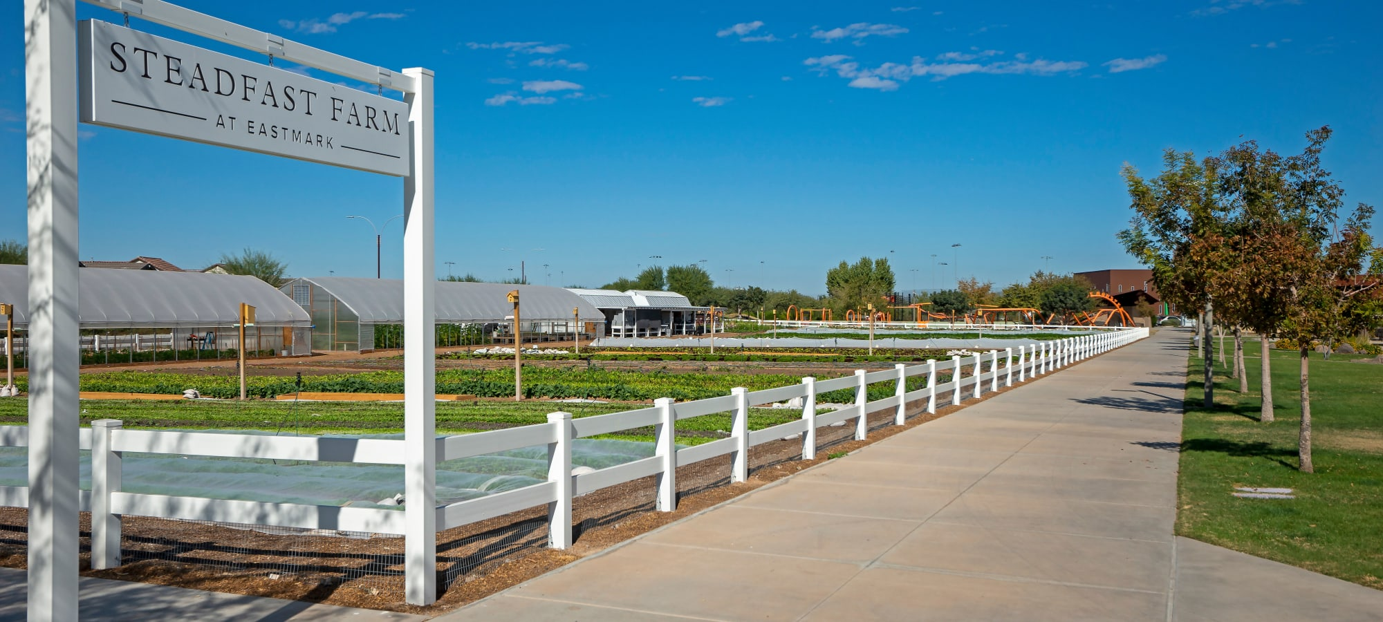 Farm at BB Living at Eastmark in Mesa, Arizona