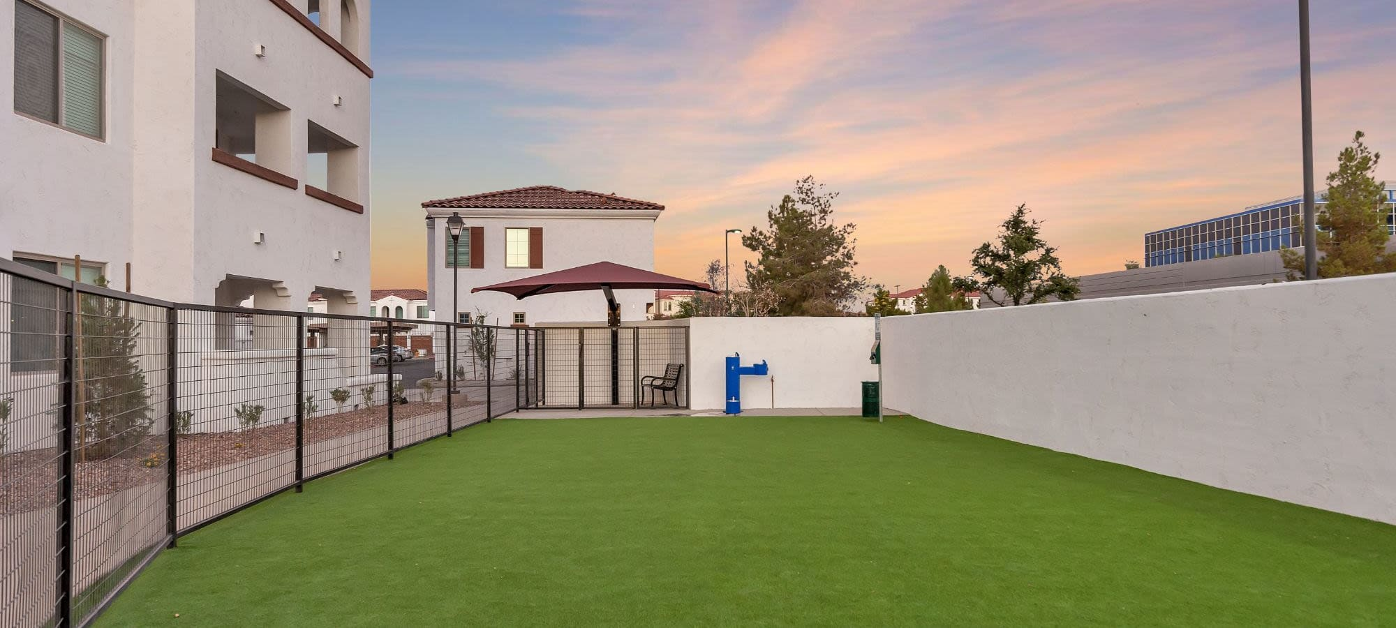 Onsite dog park at Arista at Ocotillo in Chandler, Arizona