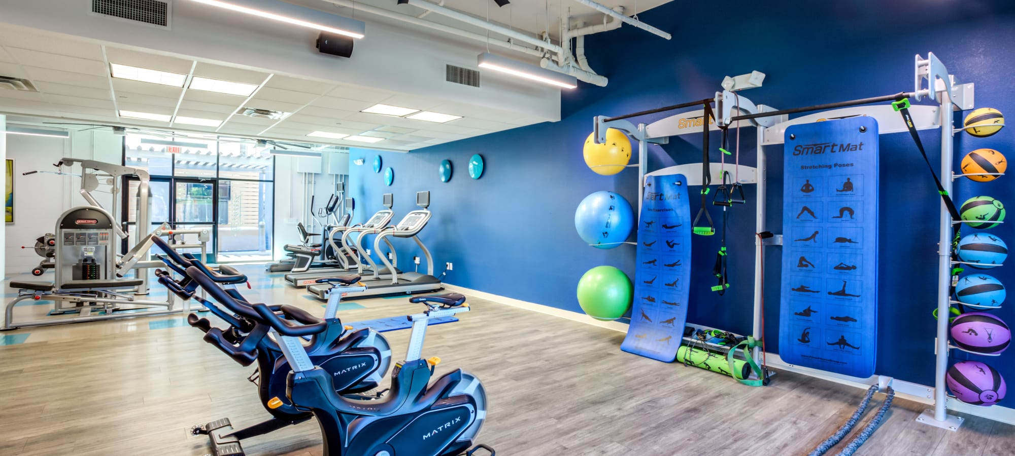 Bright blue fitness center at The Fleetwood in Tempe, Arizona