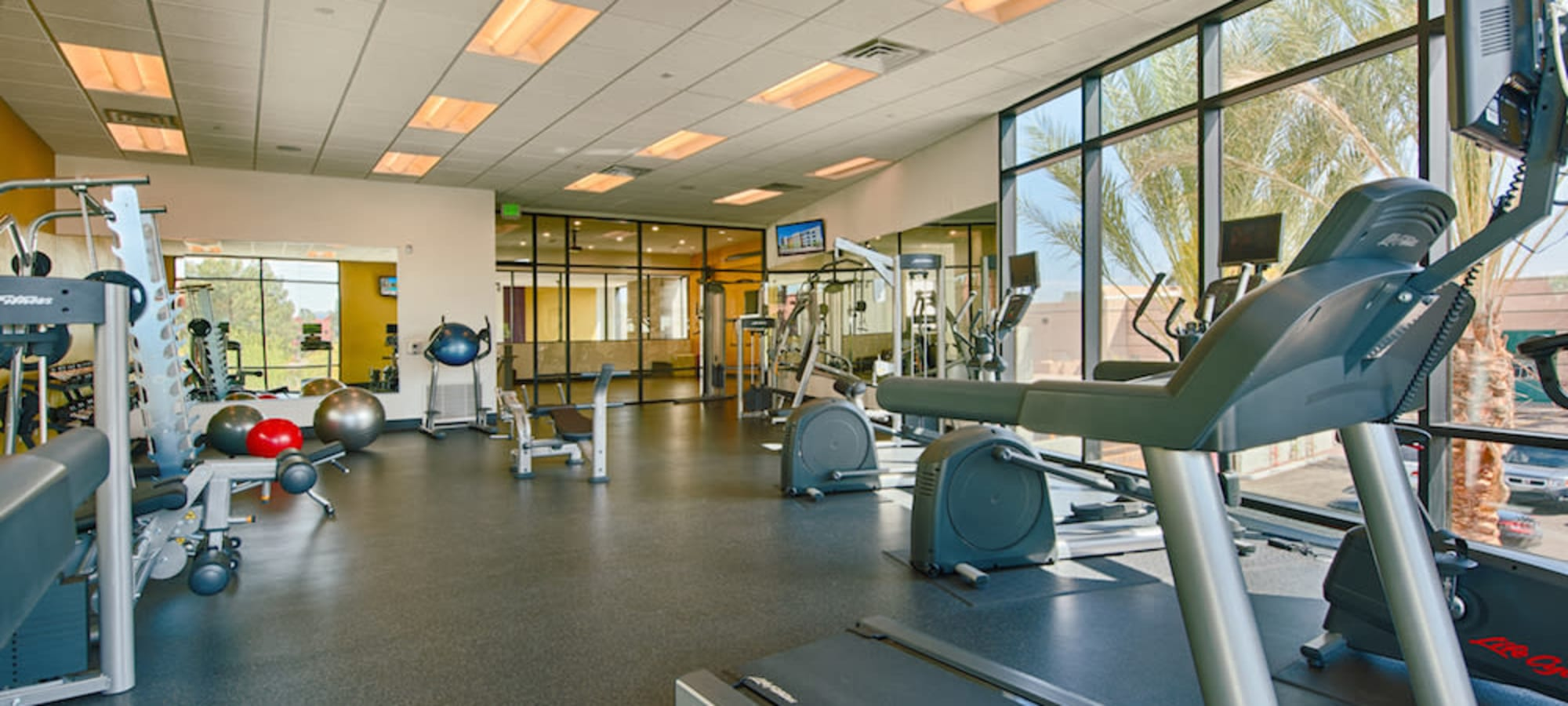 Well-equipped fitness center at Cactus Forty-2 in Phoenix, Arizona