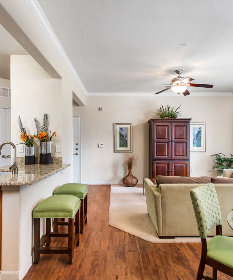 Wood-style flooring and black appliances in a kitchen at Onion Creek Luxury Apartments