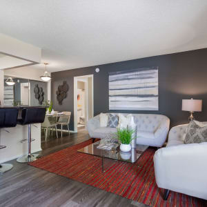 The Vue at Baymeadows Apartment Homes Photo