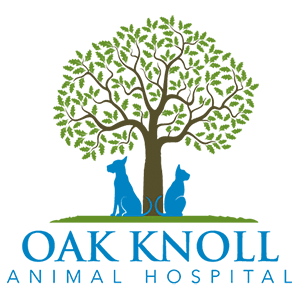 Moline Animal Hospital Reviews | Oak Knoll Animal Hospital