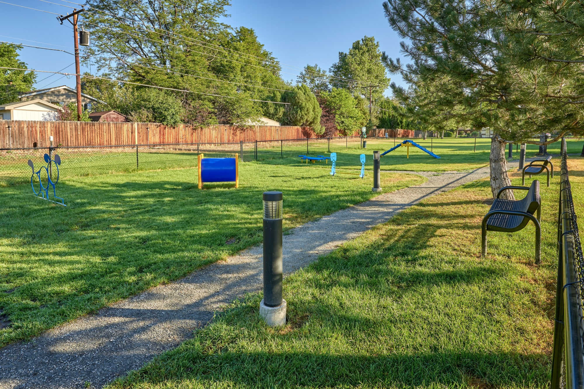 The off-leash dog park at Bear Valley Park in Denver, Colorado