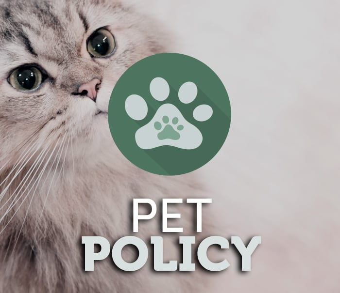 Read our pet policy today at Icon at Broken Arrow