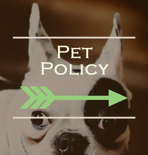 Our Waco apartments are pet friendly