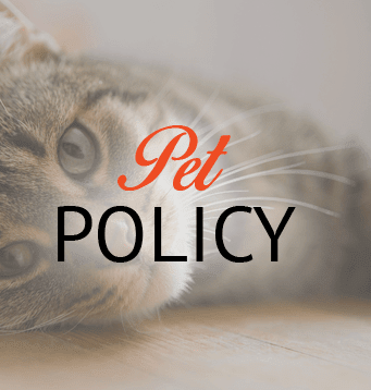 Our Pet policy at Barcelona Apartments in Tulsa