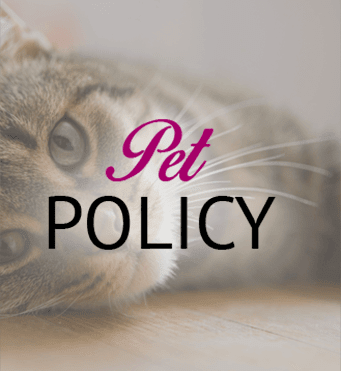 Pet policy for our Jenks, OK apartments