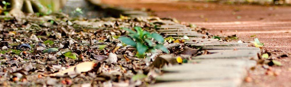 Our apartments in Tulsa, OK are located in a convenient area