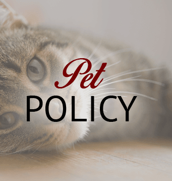 Information about our pet policy in Lubbock