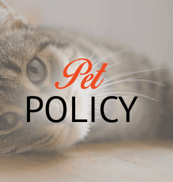 Pet Policy informations for apartments in Broken Arrow