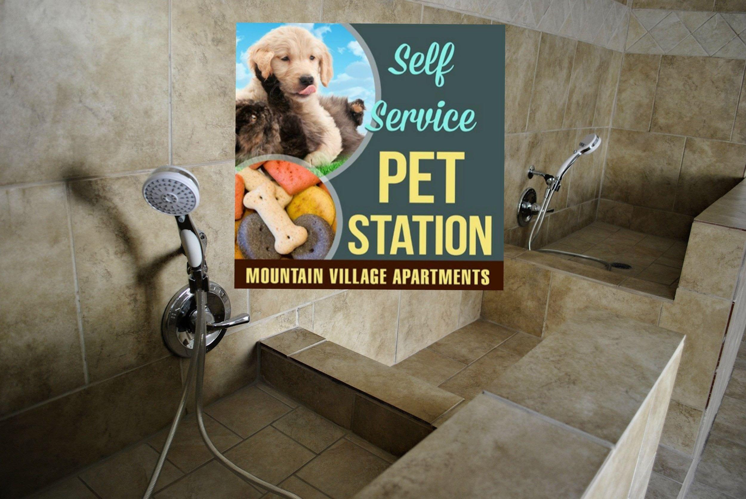pet friendly apartment complexes