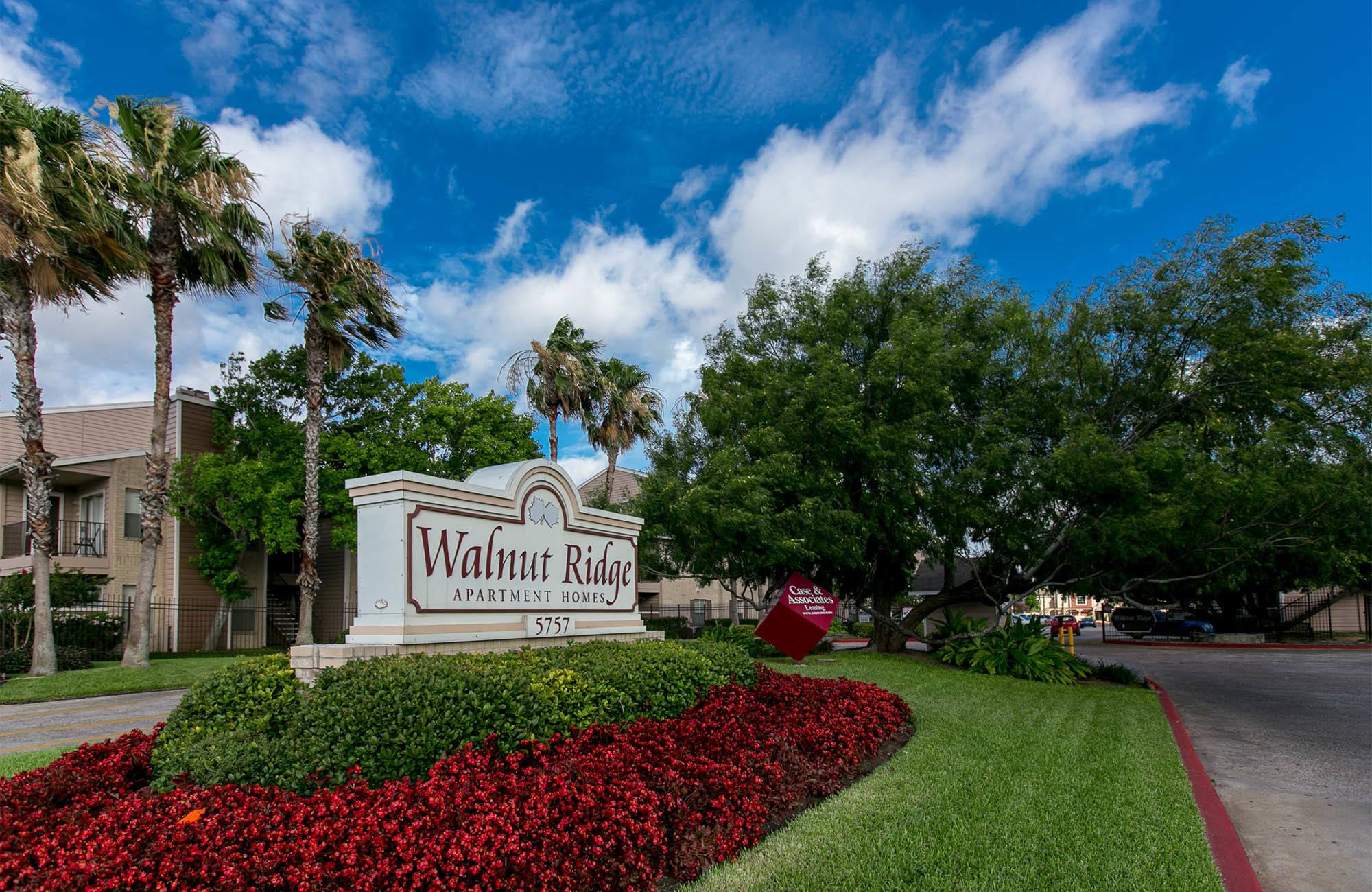 south side corpus christi, tx apartments | walnut ridge apartments