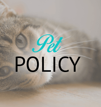 Information about our Wichita apartment community's pet policy
