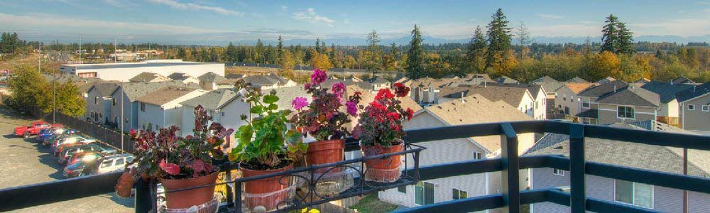 A view of the neighborhood around our senior living community in Lynnwood