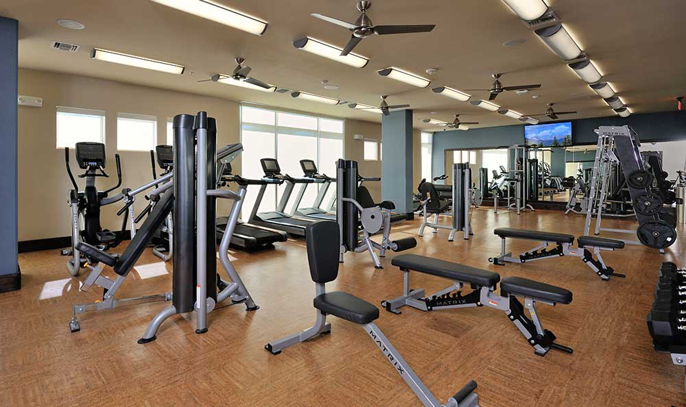 Stay fit and strong at the fully equipped gym in 422 At The Lake