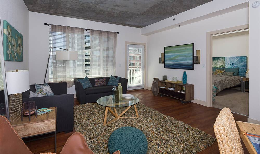 View into the living room at one of our luxury apartments