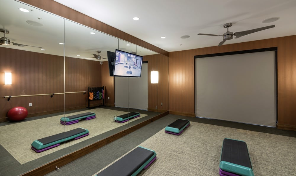Fitness center and big screen tv