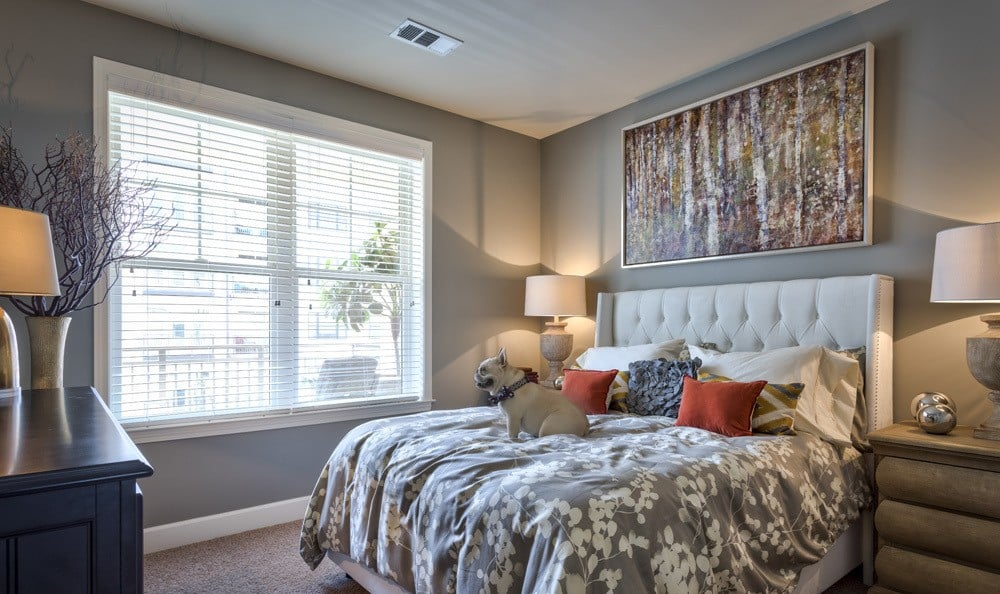 Bedroom at apartments in NC