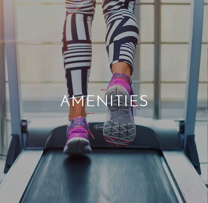Amenities at VIA
