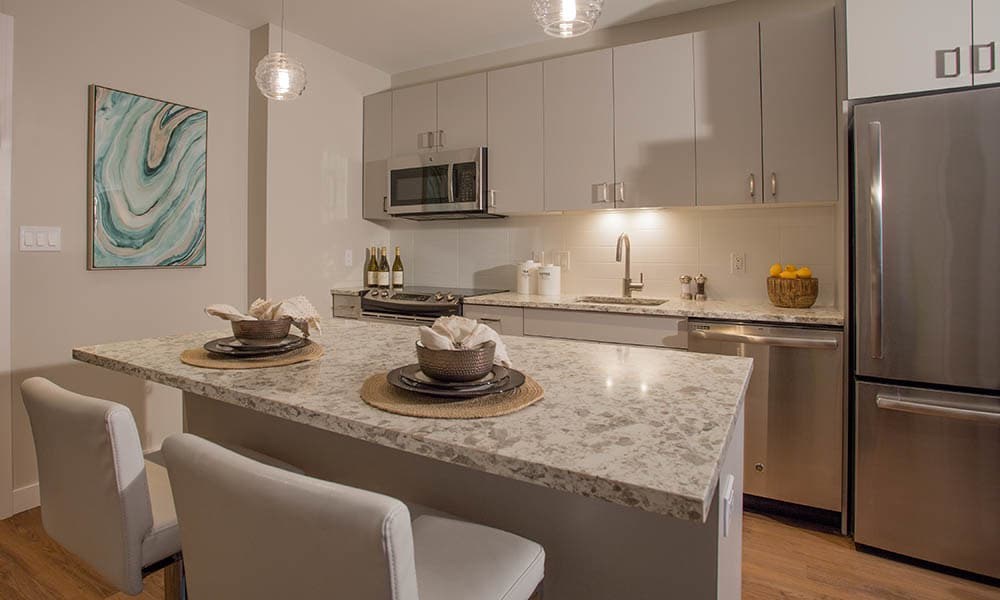 Kitchens with granite countertops at VIA Seaport Residences