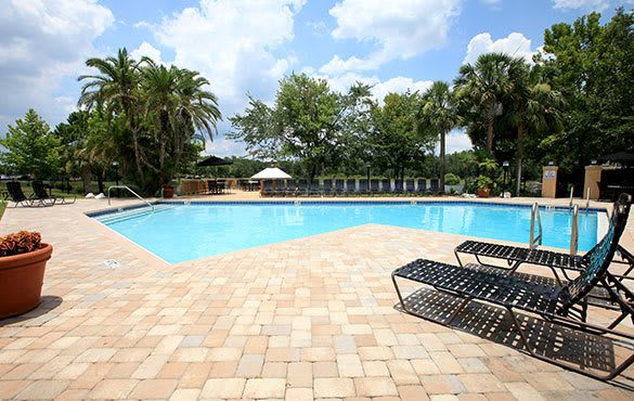 Swimming pool at our Tampa apartments