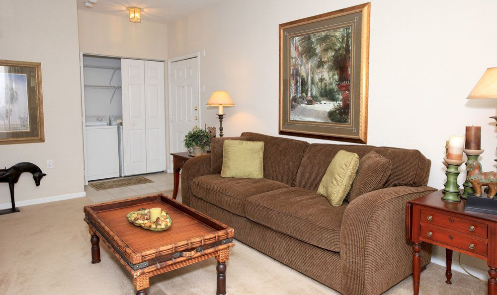 Comfortable living area in Tampa apartments
