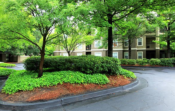 Community amenities offered at our Atlanta apartments