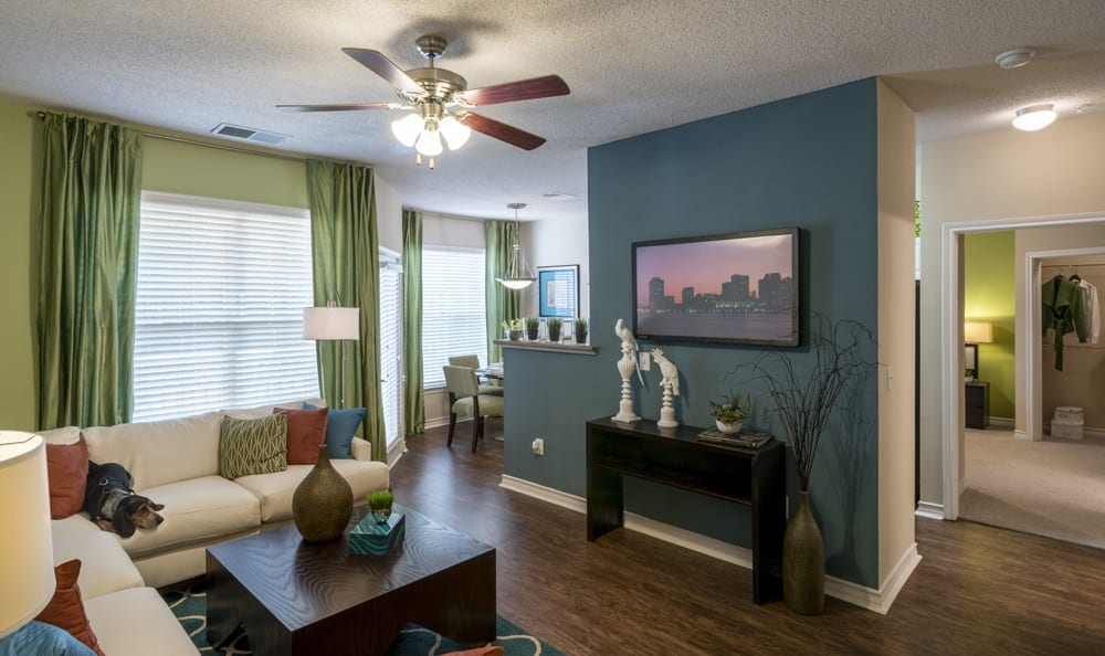 Relax in the living room of Franklin apartments
