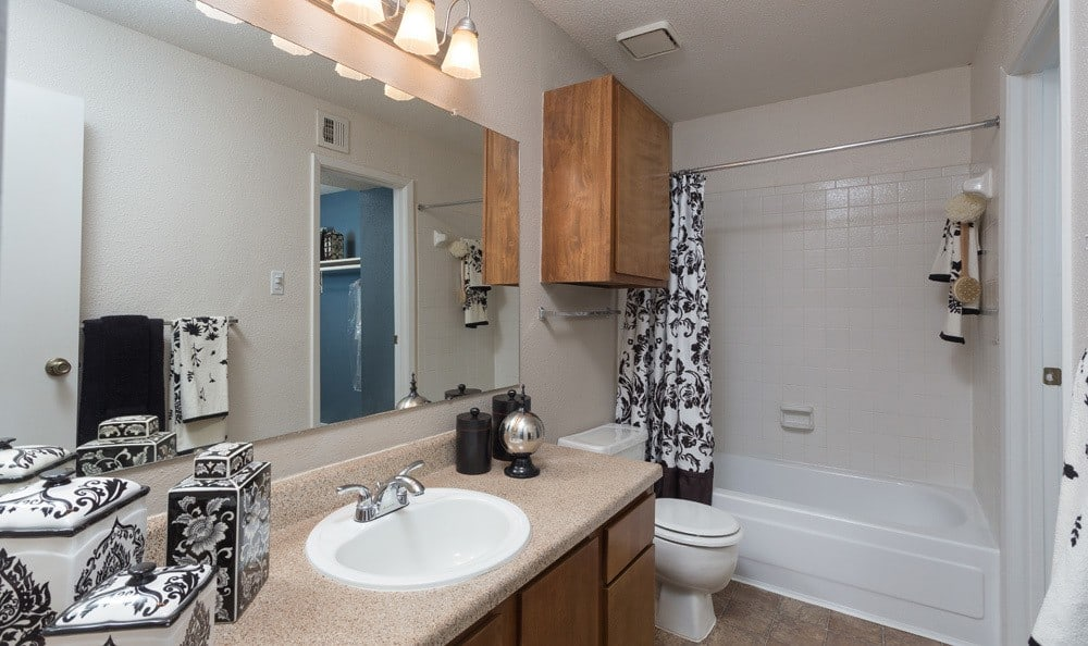 Houston apartments clean bathroom