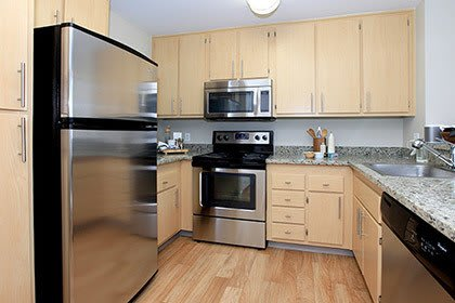 San Jose apartments kitchen