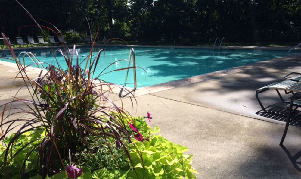 A sparkling pool is just one of the many amenities that Raintree Island Apartments has to offer
