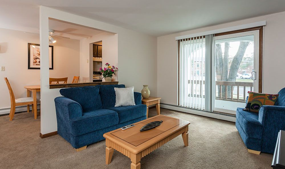Living Room at Paradise Lane Apartments