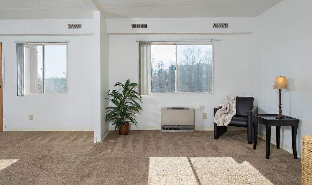 Park Guilderland Apartments Living Room Windows in Guilderland Center, NY