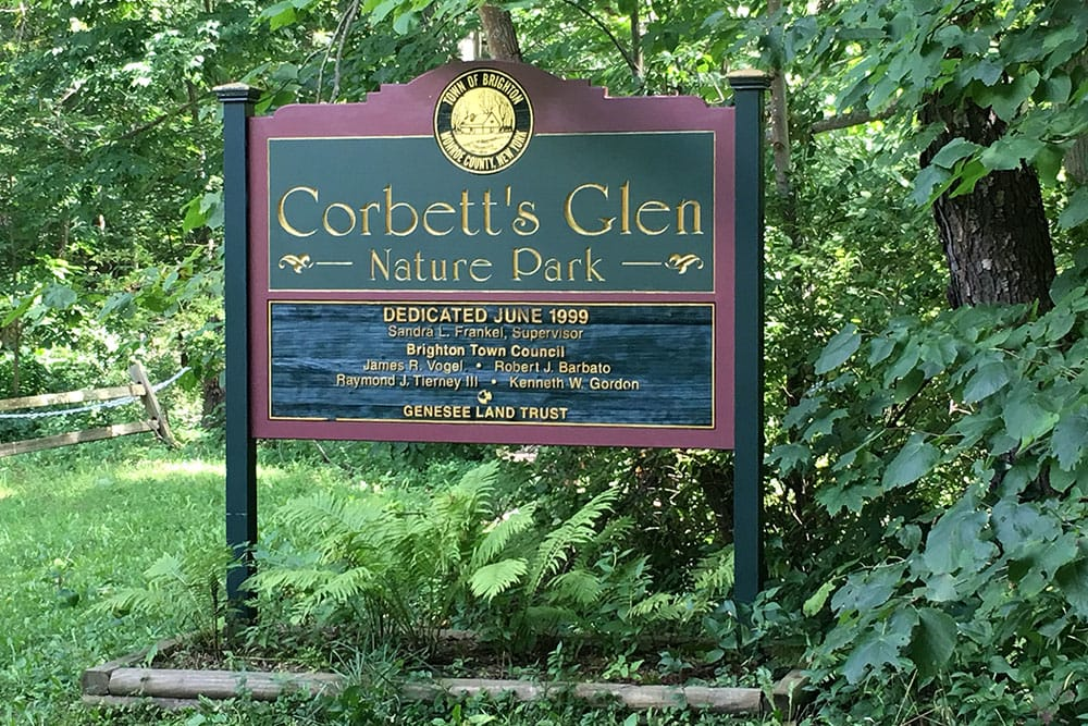 apartments for rent near a park in Penfield NY