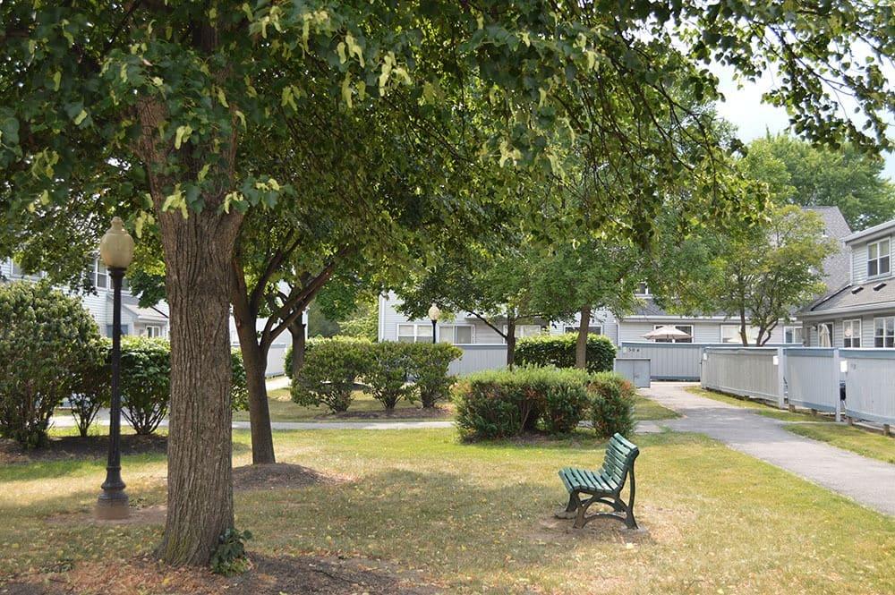 park area in Rochester, NY