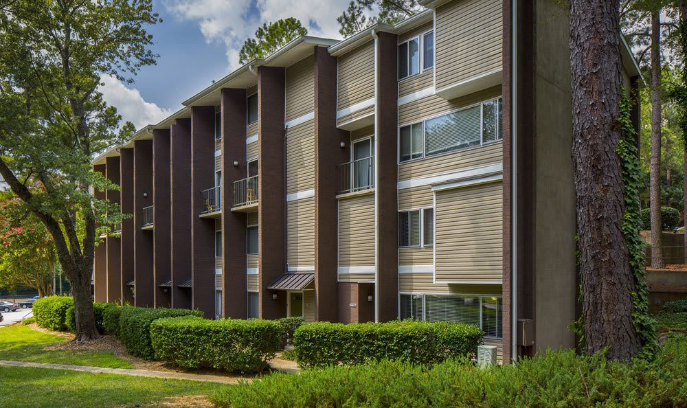 Raleigh apartments that are kid and pet friendly