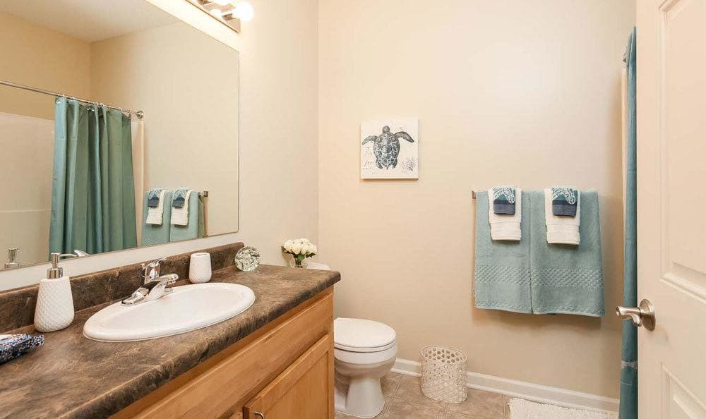 Another angle of our bathrooms at our apartments in Farmington, NY