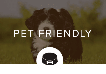Pet friendly apartments in Knoxville, TN