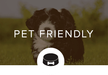 Pet friendly apartments in Plano