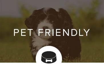 Pet friendly apartments in Clarkston, GA.