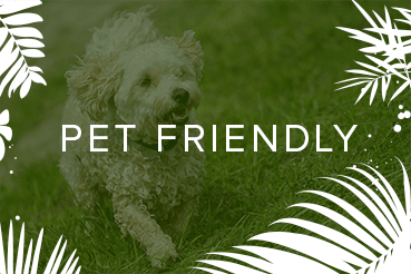 Pet friendly apartments in Ponte Vedra Beach