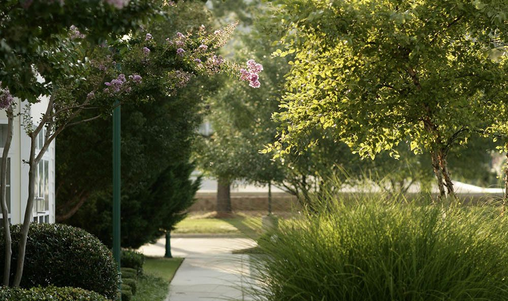 Take a lovely stroll at our senior living facility in Huntsville