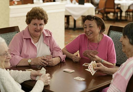 Find new friends at senior living in Palm Harbor
