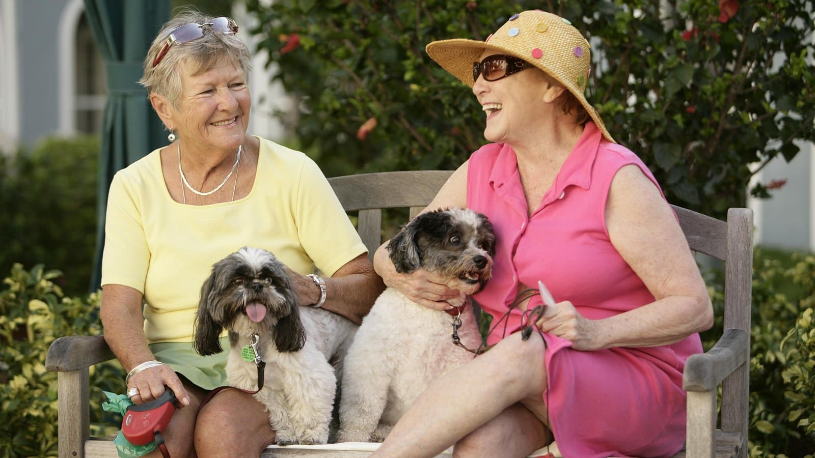 Happy and independent residents take their dogs for a walk at HarborChase.