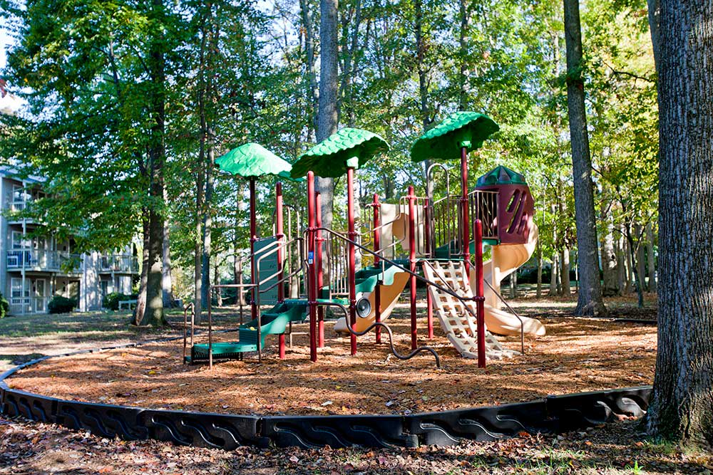 Let your kids play at the playground at The Douglas at Constant Friendship.