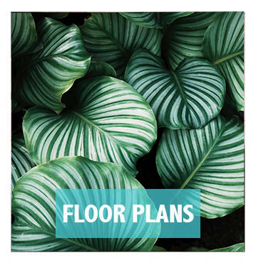 Check out Integra River Run's floor plans