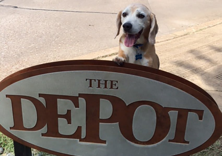 August 2014 Pup of the Month