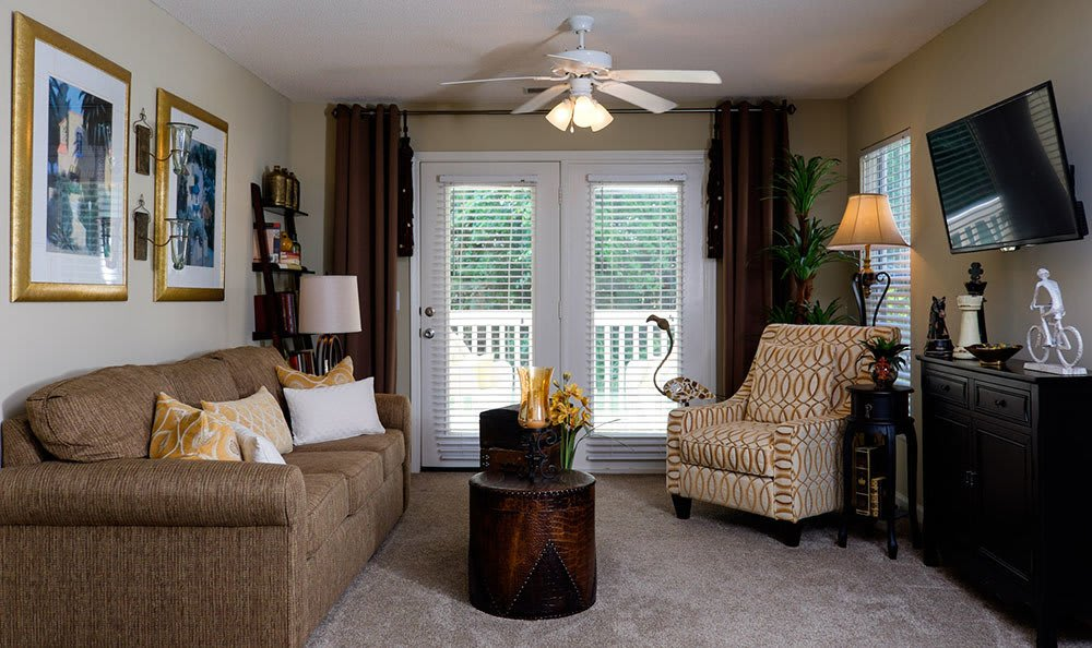 For the ultimate in comfort on a cold winter's day, choose an apartment home with a natural wood-burning fireplace here at Palmetto Pointe