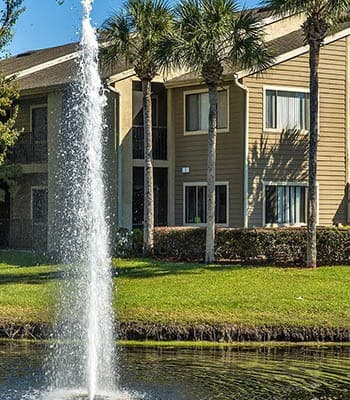 Palencia Apartments offers an impressive list of Apartment Features and Community Amenities
